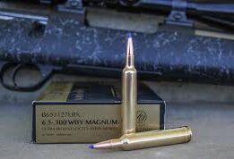 Reloading The .300 Weatherby Magnum Rifle