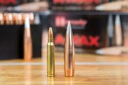 Reloading The .50 BMG